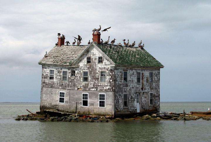 gollandskij-ostrov