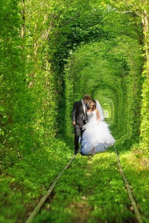 svadebnoe-foto-v-tonnele-lyubvi