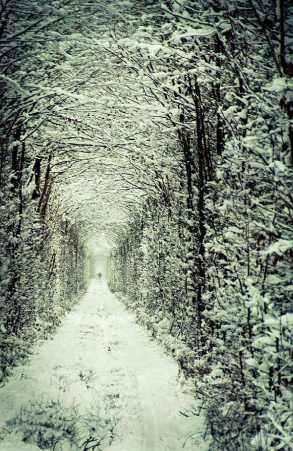 tonnel-lyubvi-zimoj
