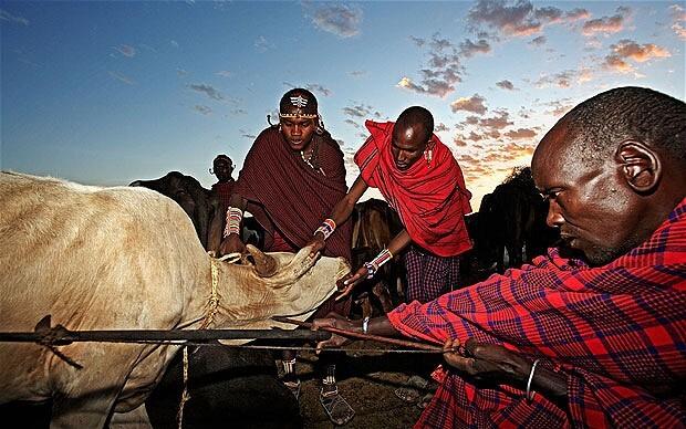 Ритуалы племени Масаи