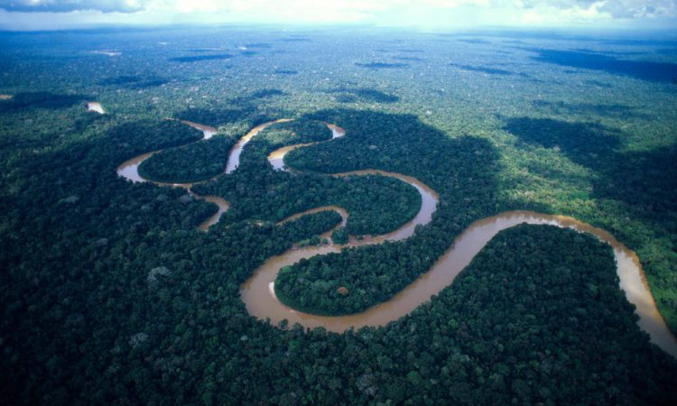 The Amazon River from atop