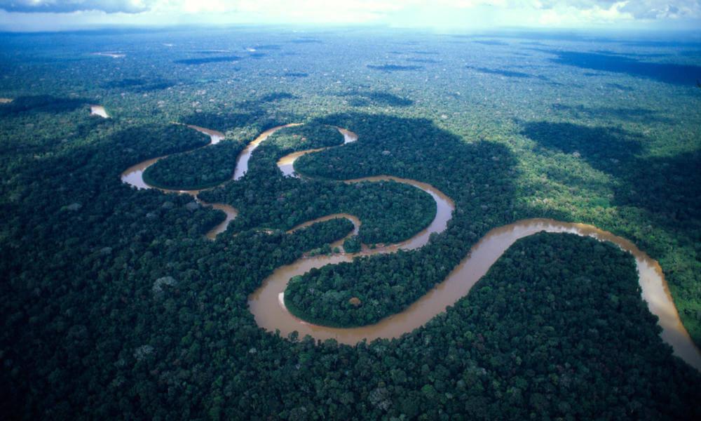 Берега Амазонки, вид сверху