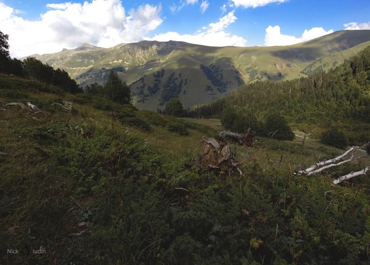В тени на склоне, Архыз, Карачаево-Черкесия