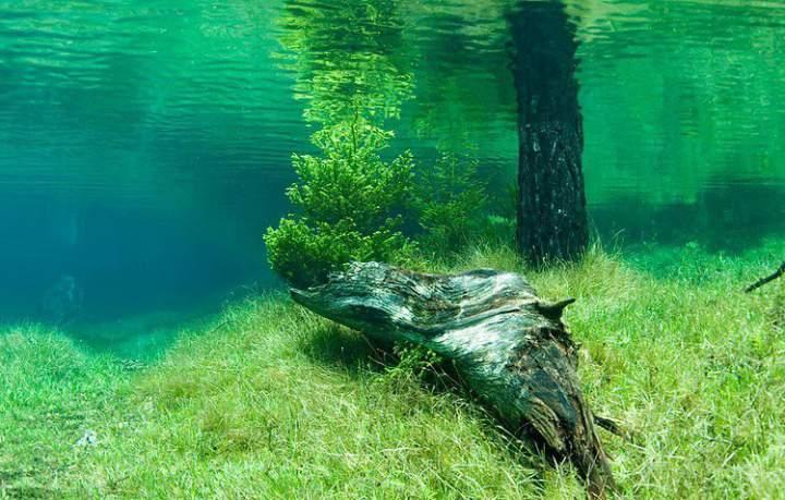 Кристально-чистая вода Зеленого озера в Австрии. Фото