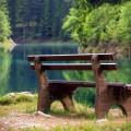 Лавочка у Зеленого озера. Фото