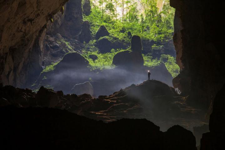 Пышная растительность в пещере Шондонг, Вьетнам