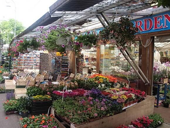 Цветочный рынок Блюменмаркт в Амстердаме
