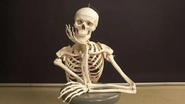 Скелет с рукой под целюстью