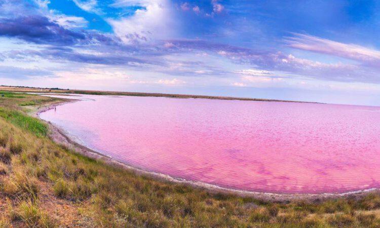 кояшское розовое озеро в крыму на рассвете