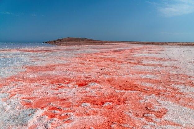 кояшское розовое озеро в крыму соль
